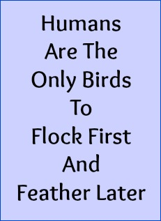 Humans are the only birds to flock first and feather later.